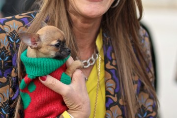 On the Street……Anna Dello Russo